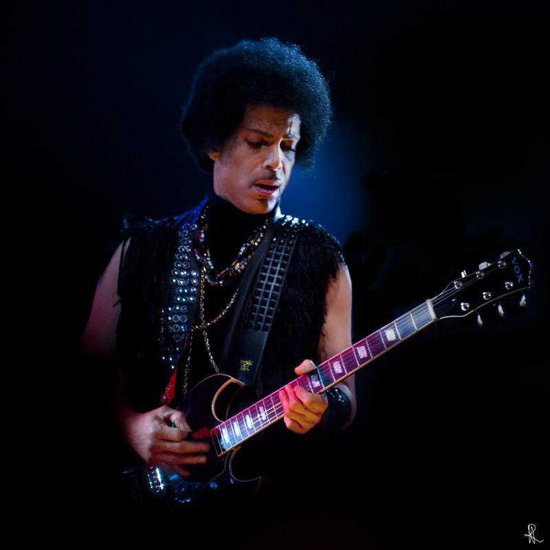 Prince 2013