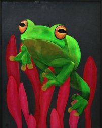 Tree frog, for sale