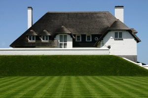 House with grass