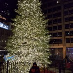 Roberts_Awesome_Christmas_Tree_Visit2016 (5)