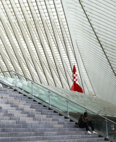 Detail station Liege Guillemins