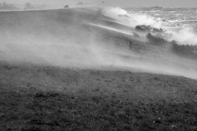 Storm Oostvaardersdijk, maart 2015