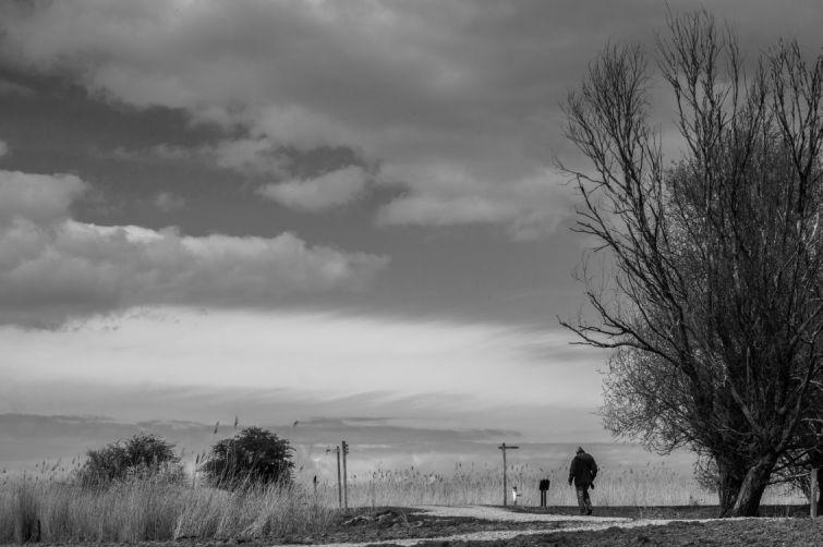 Fotograaf druipt af bij Winteropenstelling Oostvaardersplassen