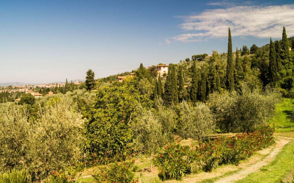 Omgeving Reggello, Toscane