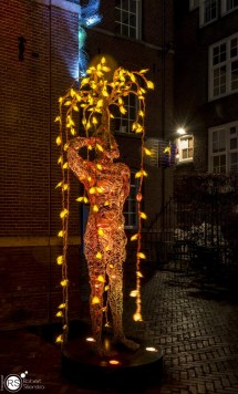 RST_Amsterdam Light festival-17 december 2016-6 (Custom)