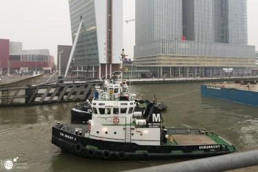 RST_door de brug-11 februari 2017-10 (Custom)