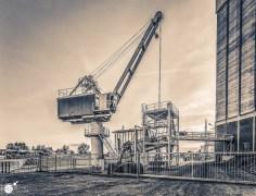 RST_Rijnhaven_uiterwaarden-09 mei 2017-3