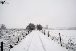 RST_Sneeuw-december 10, 2017-3