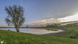RST_Rijnhaven_uiterwaarden-09 mei 2017-1-2