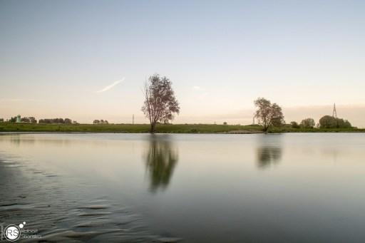 RST_Rijnhaven_uiterwaarden-09 mei 2017-5
