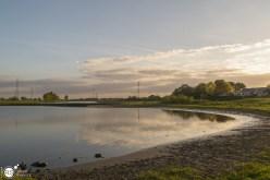 RST_Rijnhaven_uiterwaarden-09 mei 2017-7