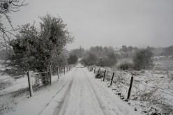 RST_Sneeuw-december 10, 2017-7