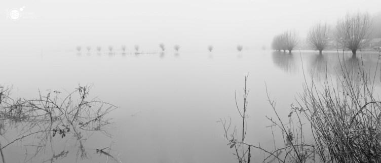 RST_Wageningen hoogwater mist-2018_1