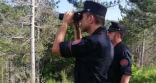 Incendi, particolare attenzione dei militari dell'Arma al Parco del Pollino