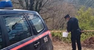 Castelnuovo di Conza, per taglio di bosco, area sotto sequestro