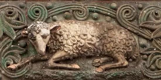 lamb close crop 2_MG_6280