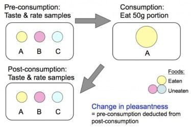 Diagram of SSS testing paradigm