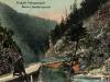 Poze vechi din Defileul Jiului (Defileul Surduc)