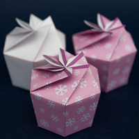 box-a200.jpg