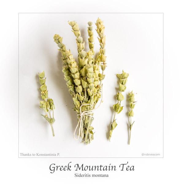 tea600.jpg