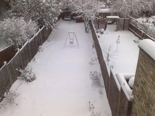 Snow in the back garden