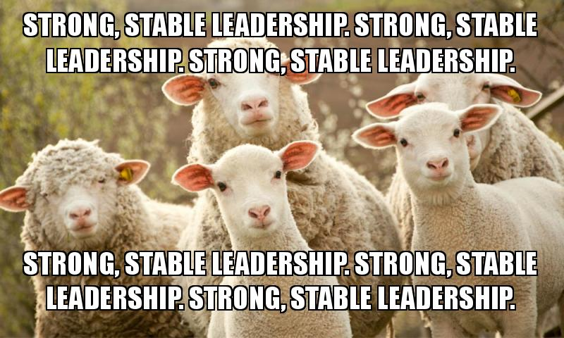 Strong and stable sheep