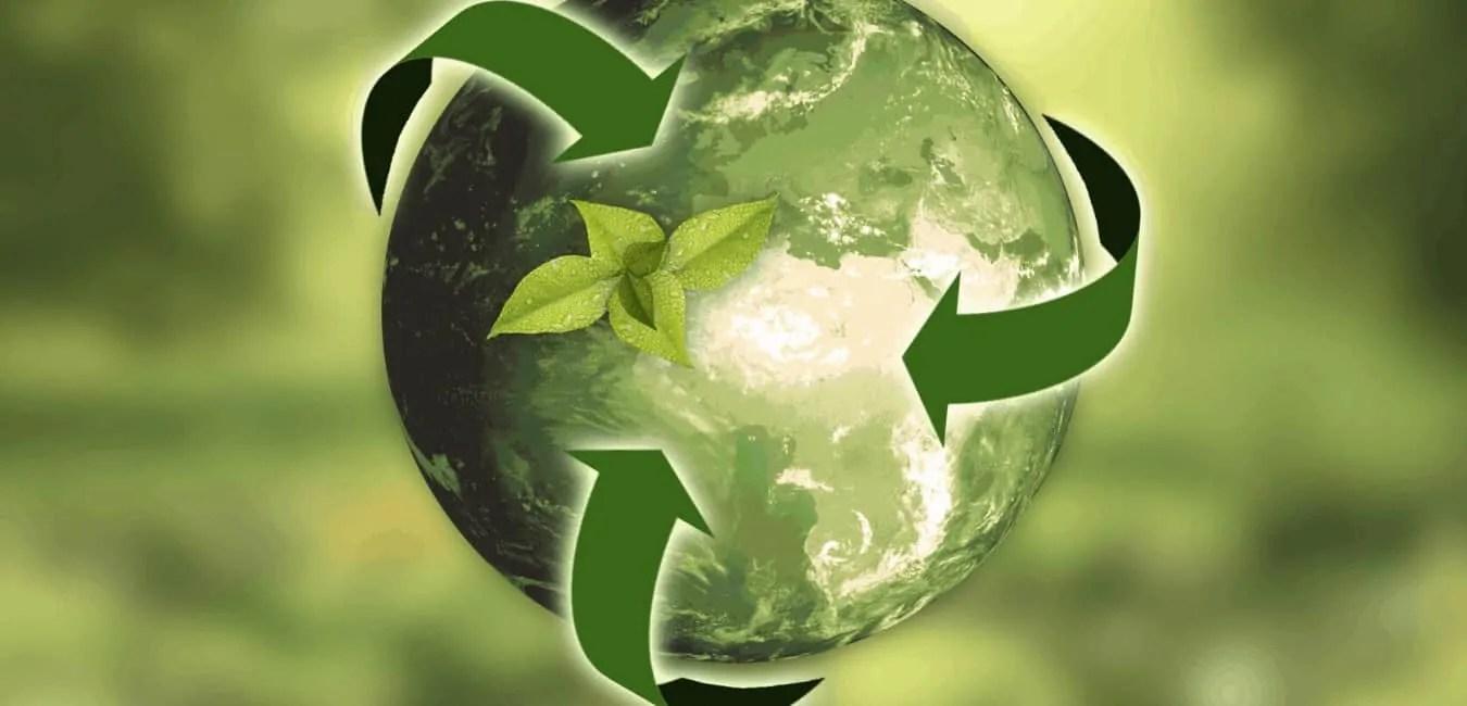 pax-investify: 1 Jahr ethisch nachhaltige Geldanlage