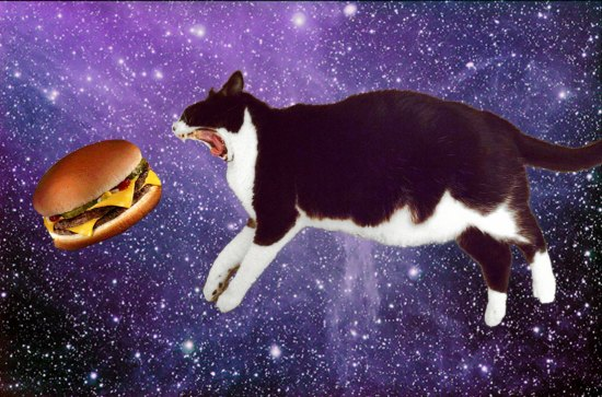 space burger cat