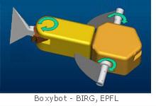 Boxybot - BIRG EPFL