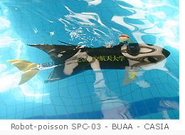 Poisson-robot chinois SPC