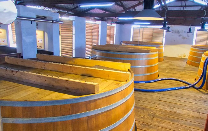 Fermentation Vats at Mount Gay Distillery
