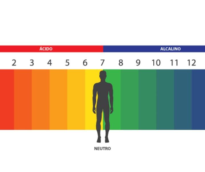 La acidez del organismo, sus efectos en la salud y especialmente en cáncer