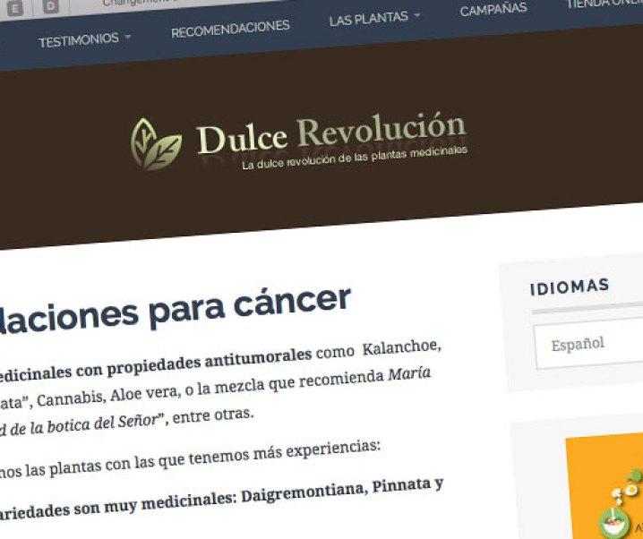 Recomendaciones para cáncer, interesante publicación de Dulce Revolución. La presento y agrego algún material.