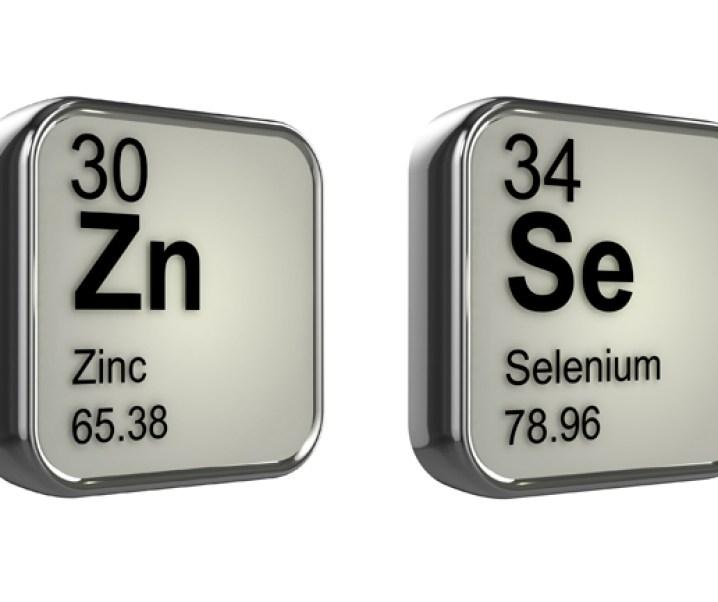 El selenio y el zinc, dos importantes elementos para la salud humana y especialmente ante el cáncer