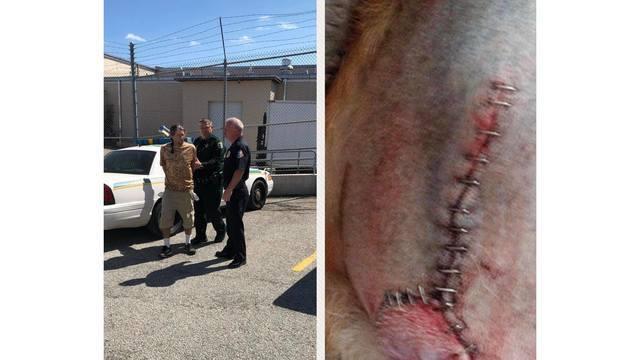 Brevard County groomer arrest_1551196059035.jpg_74999786_ver1.0_640_360_1551204047302.jpg_75025107_ver1.0_640_360 (1)_1551211437204.jpg.jpg