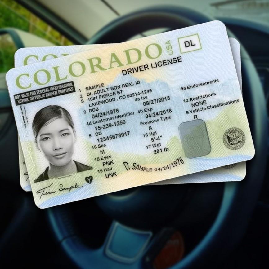DRIVER LICENSES_1559795648970.jpg.jpg
