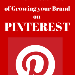 basics of pinterest rock and drool