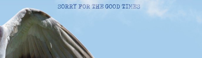 Album Review: Sorry For The Good Times (Red Pine Timber Company)
