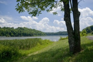 Rockcastle_co_lakeLineville_2_DSC0009