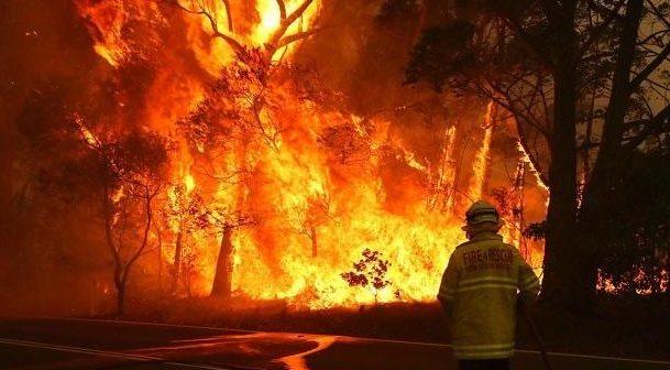 metallica australia fires