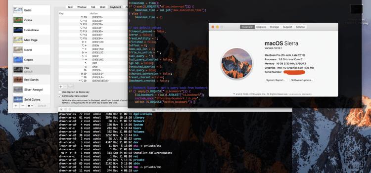 วิธีปรับแต่ง Terminal/Vim บน MacOS Sierra เพื่อให้รองรับปุ่ม Home/End  และ Syntax Color