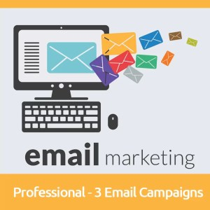 Professional Email Campaign Package