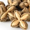 Sacha Inchi Dried