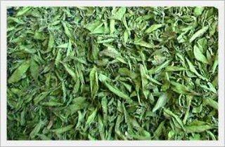 stevia leaf dried
