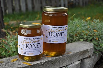 wildflower honey 1