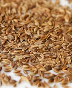 essential oil dill seed
