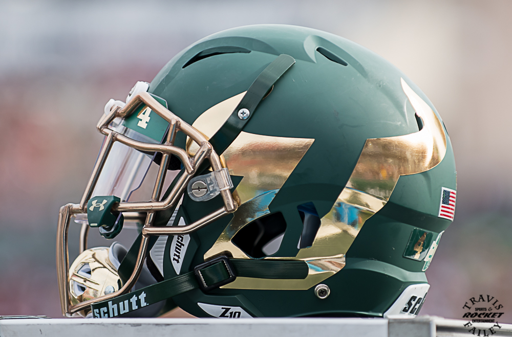 Image result for usf football helmet