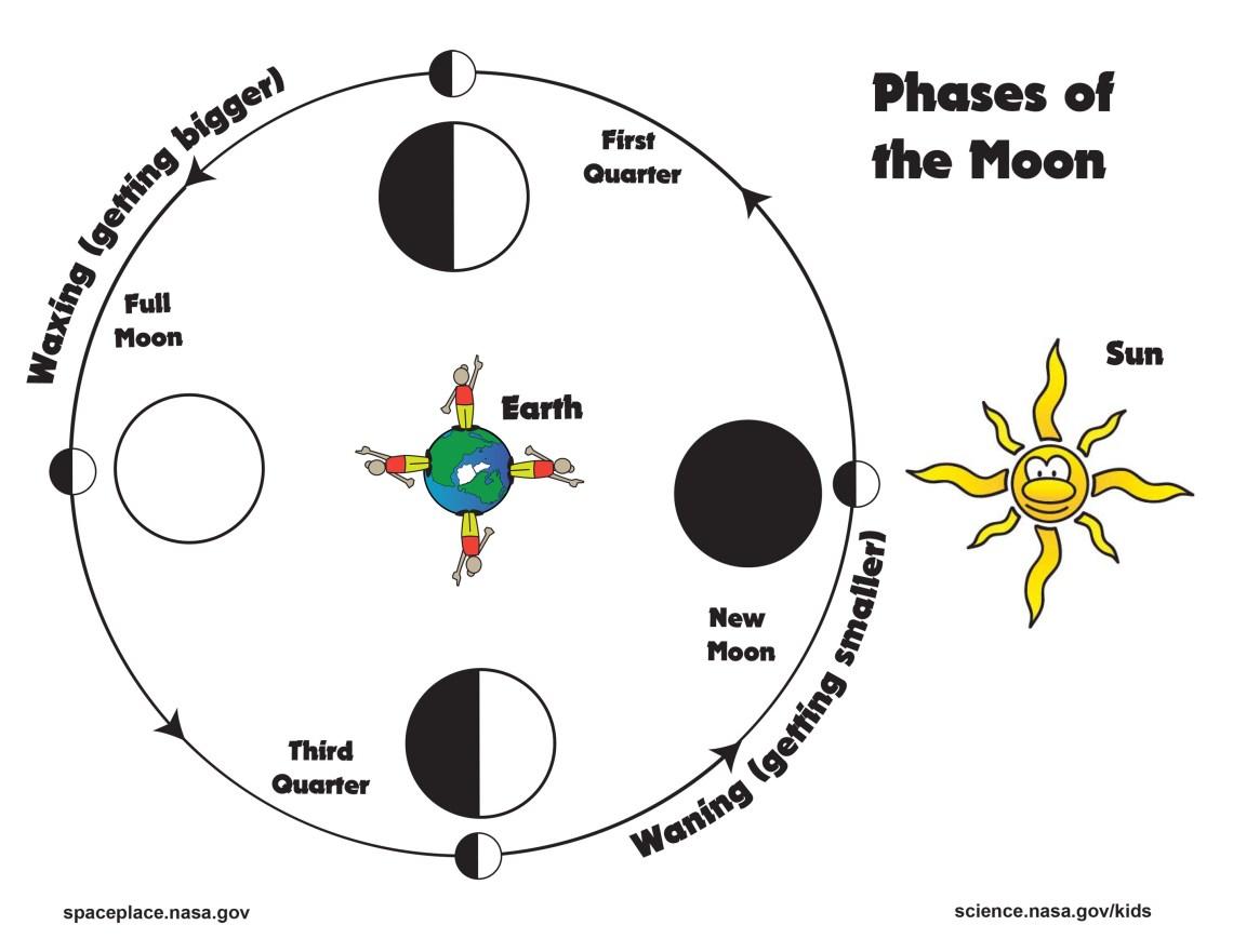 moon-phases-activity-sheet