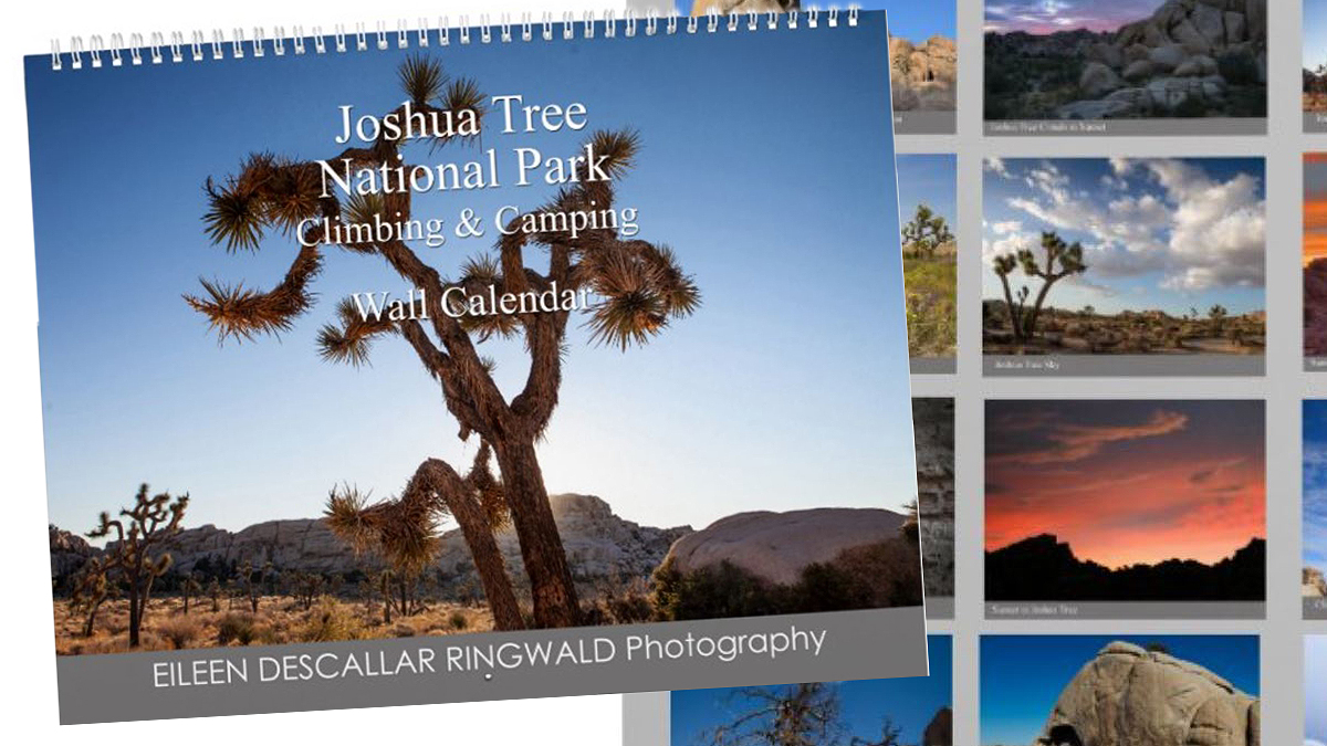 Jtree Calendar image