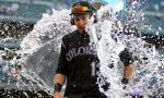 colorado_rockies_dancing_fan